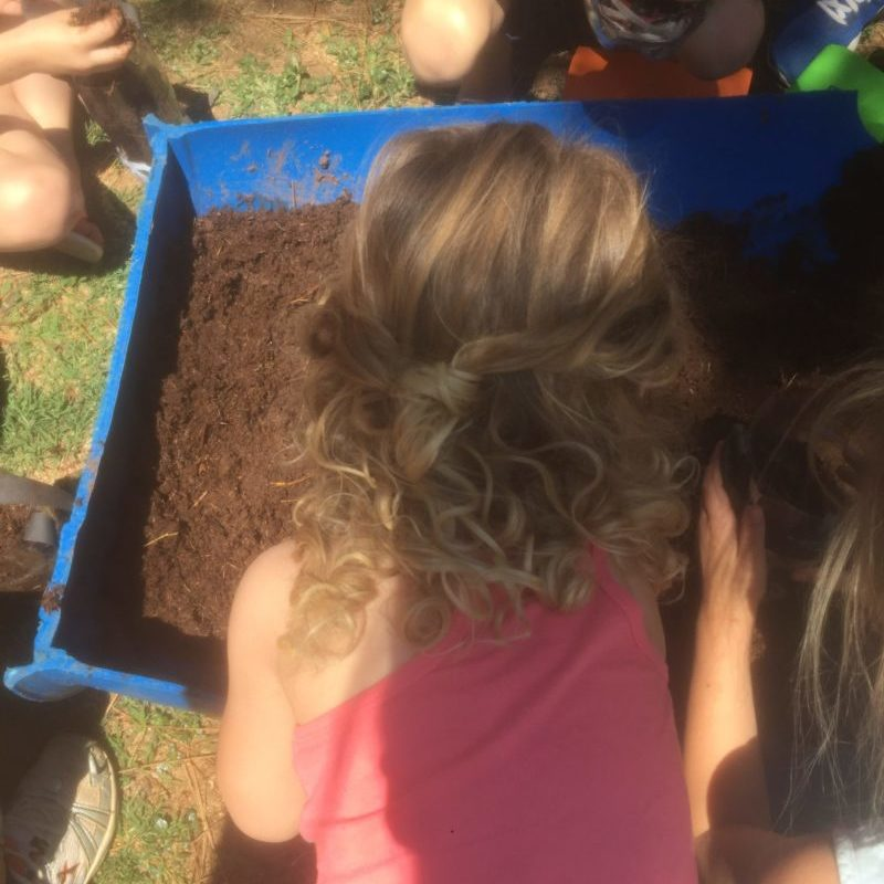 Madison adding beautiful rich soil into her worm farm above the paper